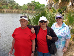group of four senior ladies