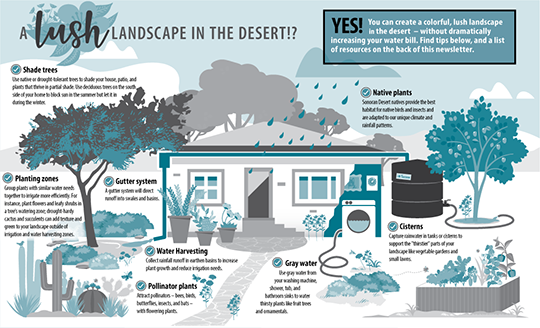 infographic-a lush landscape in the desert