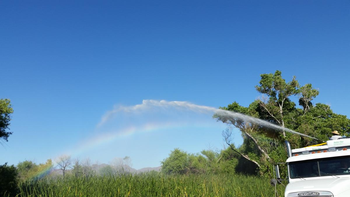 Larvicide application at Sweetwater Wetlands