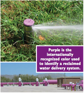 Tucson Water purple color used to identify a reclaimed water delivery system